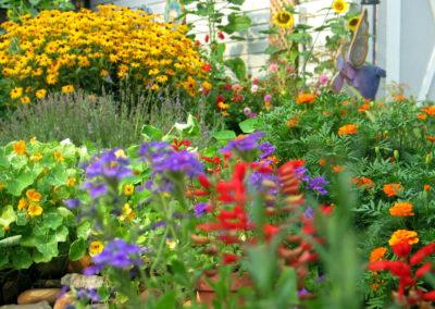 garden-brights